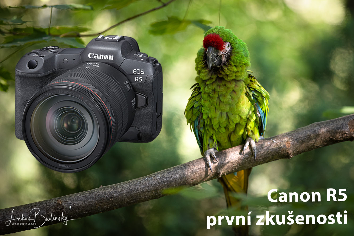 Canon R5 recenze a test